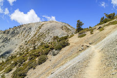 Wandern im Mt Baldy-Spur stockfotos