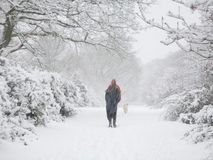Wandern im Winter Lizenzfreies Stockbild