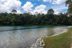 Wandern an Macritchie-Reservoir lizenzfreies stockfoto