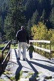 Wandern mit Vati Stockbild