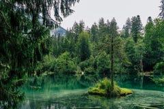 Wandern Sie zum Crestasee in Obersaxen, GraubÃ-¼ nden die Schweiz stockfotos