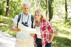 Wandern von älteren Paaren Stockbild