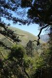 Wandern von Ansicht Stockbild