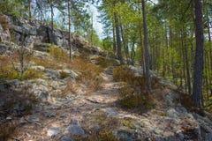 Wandernde Spur Stockfoto