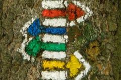 Wandernde Spur markiert Pfeile auf dem Baum stockbild