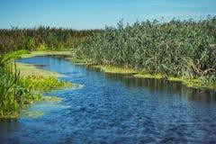 Wandernder Fluss Lizenzfreies Stockfoto