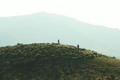 Wanderung Lizenzfreies Stockfoto