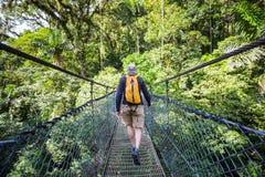 Wanderung in Costa Rica Stockfoto