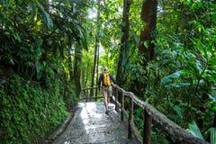 Wanderung in Costa Rica Stockfotografie