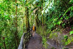 Wanderung in Costa Rica Lizenzfreie Stockfotos