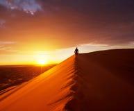 Wanderung in der Wüste Stockbild