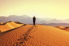 Wanderung in der Wüste Lizenzfreies Stockfoto
