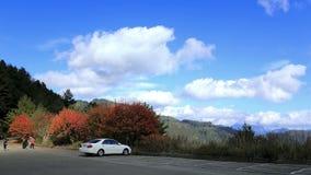 Wanderung im Herbst Lizenzfreie Stockfotos
