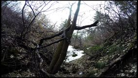 Wanderung Little Rock-Schlucht-Utahs Timelapse stock video footage