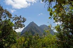 Wanderung in Réunion stockfotos