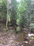 Wanderungen und Flüsse lizenzfreies stockfoto