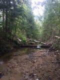 Wanderungen und Flüsse Stockfotografie