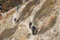 Wanderungs-Weg in Indien Stockbilder