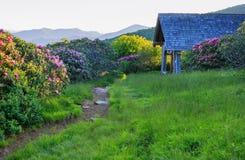 Wanderweg-Craggy Garten-Schutz-North Carolina lizenzfreie stockfotografie