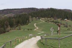 Wanderweg in den polnischen Bergen Lizenzfreie Stockfotos