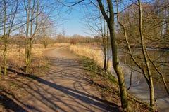 Wanderweg entlang einem Abzugsgraben mit bloßen Bäumen beiseite an einem sonnigen Wintertag mit klarem blauem Himmel Stockbild