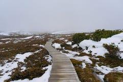 Wanderweg im Berg im Winter Stockbild