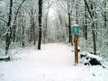Wanderweg im Schnee Stockbilder
