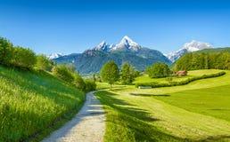Wanderweg mit einer fantastischen Ansicht auf das Watzmann Lizenzfreie Stockfotografie