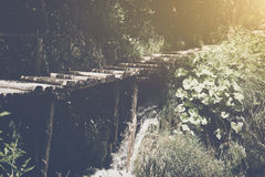 Wanderweg mit Sonnenlicht Lizenzfreie Stockbilder
