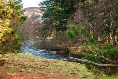 Wanderweg in Nationalpark Cairngormss Aberdeenshire, Schottland, Großbritannien lizenzfreies stockfoto