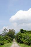 Wanderweg und blauer Himmel lizenzfreie stockfotografie