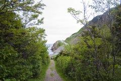 Wanderweg und Cliffside-Straße Stockbild