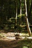Wanderwegzeichen - rustikale Spur lizenzfreie stockfotografie