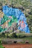 Wandgemälde Mural de la Prehistoria The der Vorgeschichte gemalt auf einer Klippenwand im Vinales-Tal, Kuba lizenzfreie stockfotografie