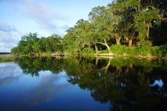 Wando River, Sc Fotografie Stock Libere da Diritti
