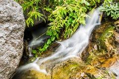 Wang Bua Ban-Wasserfall in Doi Suthep-Pui Nationnal Park, Chiang Lizenzfreies Stockbild