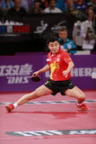 WANG Hao ( CHN ) Stock Images