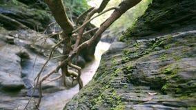 Wang Sila är ett härligt ställe i det Pua området, det Nan landskapet, Thailand arkivfilmer