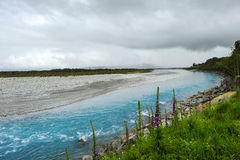 Nyazeeländsk Wanganui flod Royaltyfri Fotografi