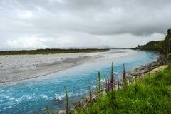 Wanganui Fluss Neuseeland Lizenzfreie Stockfotografie