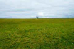 WANGEROOGE, ГЕРМАНИЯ 4-ое июля 2017: взгляд велосипеда на дюнах моря wadden заповедника Стоковое фото RF