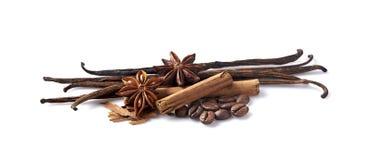 Wanilia, cynamon, anyż i kawa na białym tle, Pikantność odizolowywać zdjęcia stock