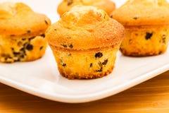 Wanilia z czekoladowych układów scalonych Muffins Obraz Royalty Free