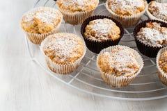 Waniliowi dyniowi muffins, torty kropiący z sproszkowanym cukierem Zdjęcia Stock