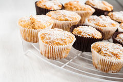 Waniliowi dyniowi muffins, torty kropiący z sproszkowanym cukierem Obraz Stock