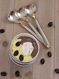 Waniliowy pudding i czekoladowy pudding zdjęcia stock