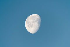 Waning moon in early morning Royalty Free Stock Image