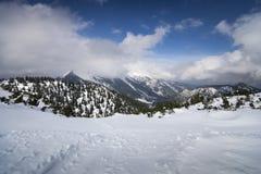 Wank berget i Garmisch-Partenkirchen, Bayern, Tyskland fotografering för bildbyråer