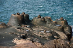 Wanli District, New Taipei City, Taiwan Yehliu Geopark and fish stone and Candlestick Stone strange rocky landscape Royalty Free Stock Image