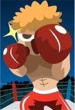 Wanna Fight? Stock Photography